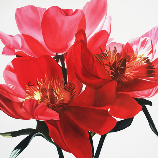 Red Tree Peonies - Giclée Print - by Barbara Buer