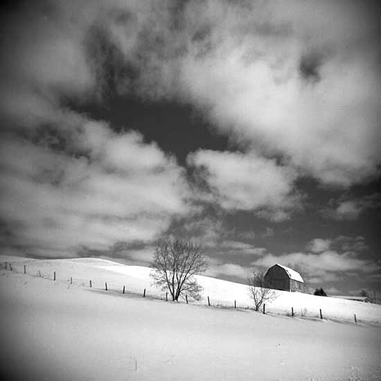 Winter Sky - Black & White Photograph - by Vicki Reed