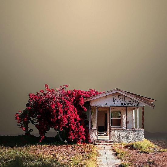 Abandoned House - Color Photograph - by Ed Freeman