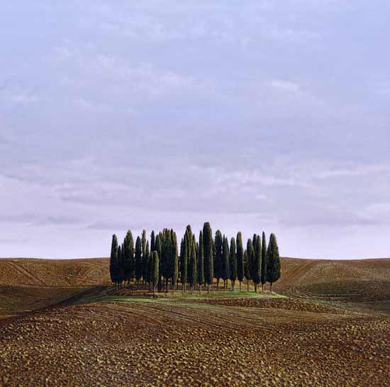 San Quirico D'Orcia - Pigment Print - by Christopher Young