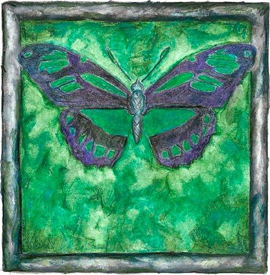 Green Butterfly - Giclee Print - by Rachel Tribble