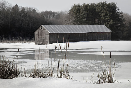 Barn at Southwick Pond - Black & White Photograph - by Jim Bremer