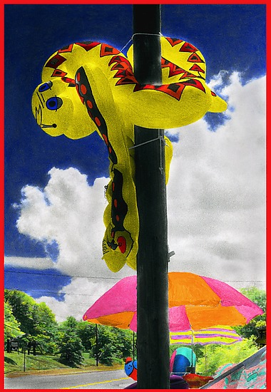 Snake on a Pole - Color Photograph - by Maurine Sutter
