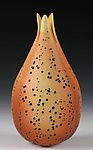 Ceramic Vase by Andy Rogers