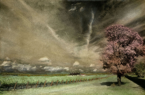 View of the North Fork - Infrared, Hand Painted Photograph - by Elizabeth Holmes