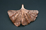 Copper Pendant by Robert Curnow