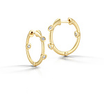 Gold & Stone Earrings by Dana Melnick