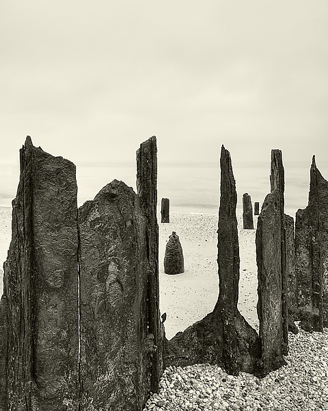Bay Wraiths - Black & White Photograph - by Geoffrey Agrons