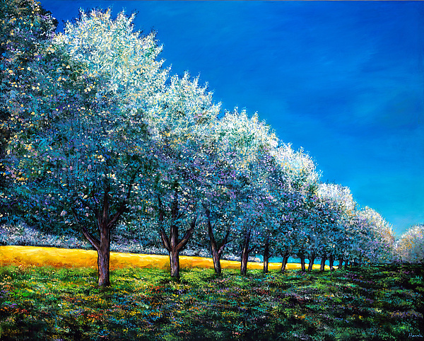 Orchard Row - Giclee Print - by Johnathan Harris