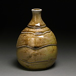 Ceramic Bottle by Steve Murphy